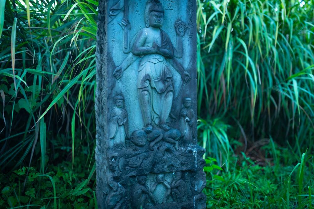 【旧谷中村・渡良瀬遊水池】鉱毒被害を受けた村は今、自然の象徴に