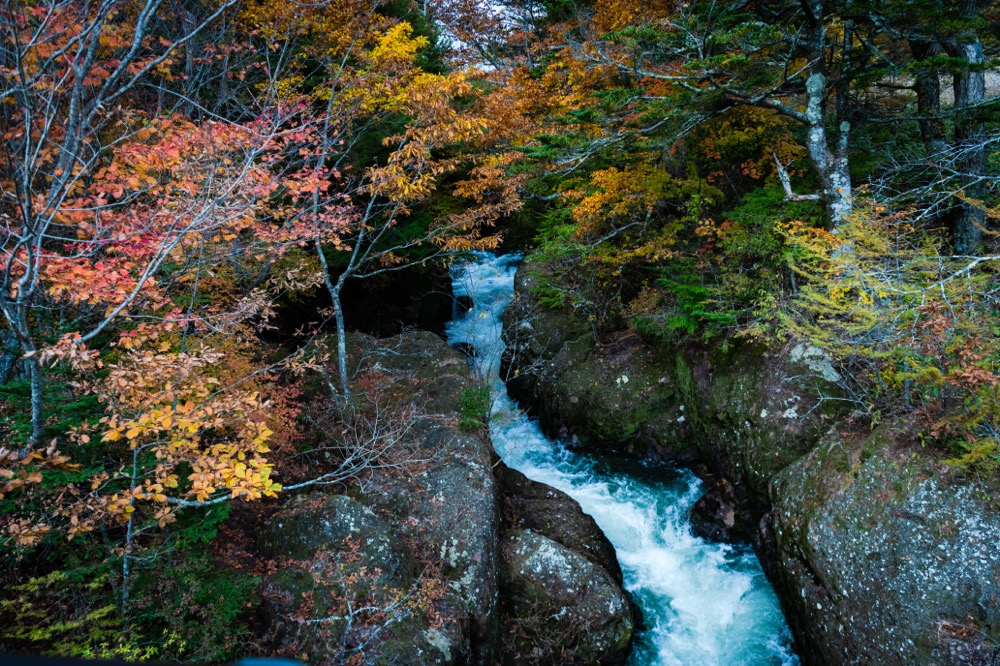 竜頭の滝の反対側の滝