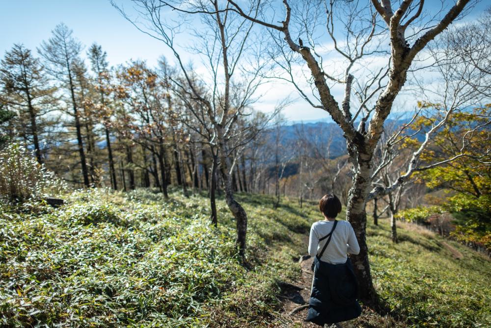 【半月山展望台(八丁出島)】片道20分歩いて見られる、日光を代表する絶景