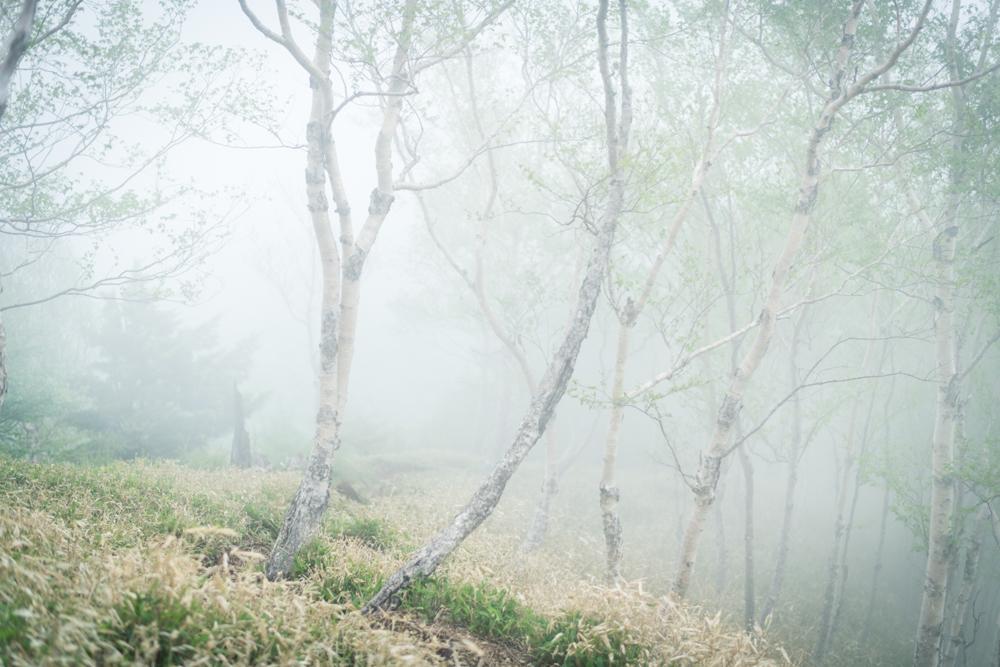 【奥日光 社山 登山と写真レポ】男体山 をバックに中禅寺湖を見下ろす眺望。霧なら写真チャンス