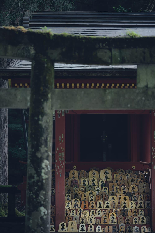 【日光山輪王寺 開山堂(かいざんどう】え、将棋?のインパクト
