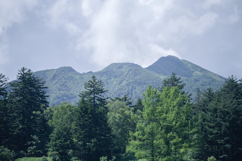 【 燧ヶ岳(ひうちがたけ 登山】2021年7月
